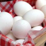 hervidores huevos